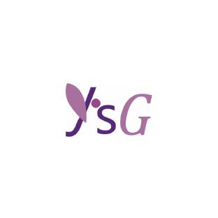Y's Global Vision Inc.
